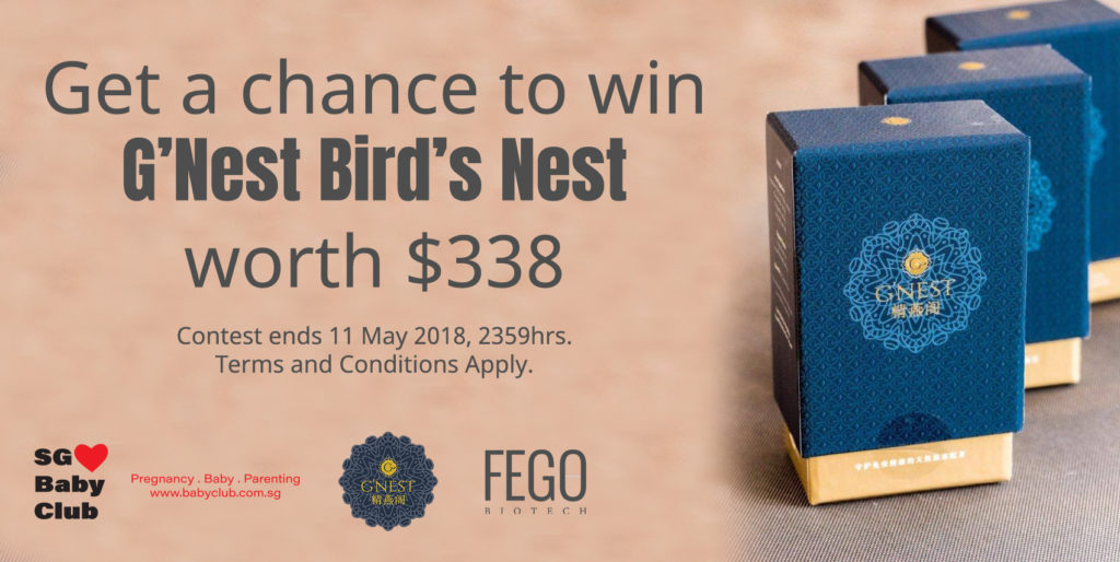 G'Nest Bird's Nest Contest